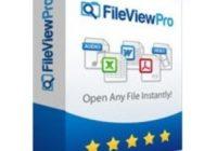 File View pro Crack